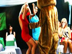 bear, dance, group, naked, babes, on