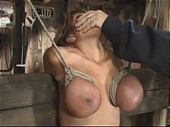 آفا ديفين, تقييد وسادية, نجوم الجنس, نهود كبيرة
