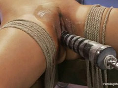 college, lesbian, vibrator, toys, fingering, face-fucking, machines