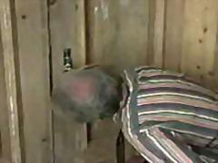 Staré Videá